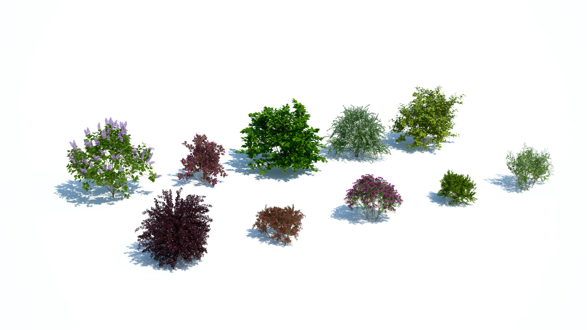 Laubwerk Plants Kit 9 - SEEIT3D Webshop