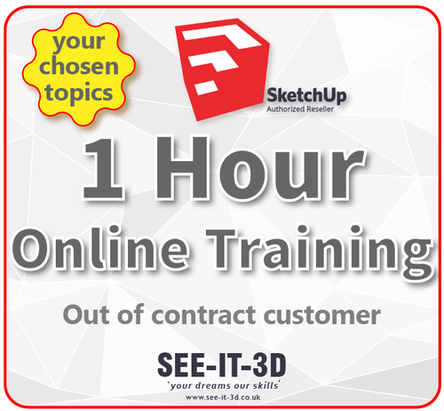 SketchUp Pro Online Tailored Training 1 HR - No Contract